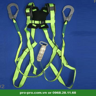dây đai an toàn 2 móc nhôm Prism DM